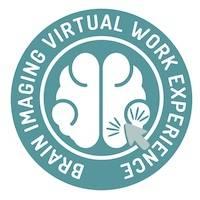 brain imaging logo