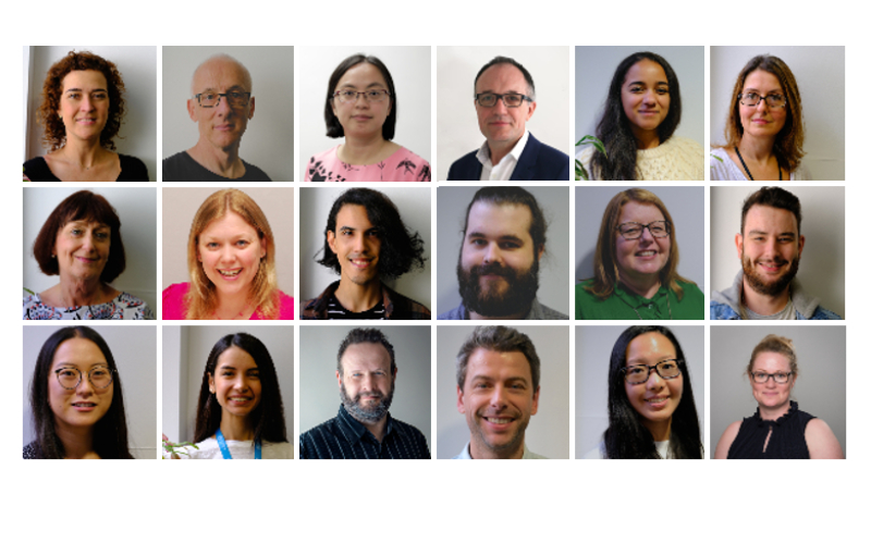 Headshots of members of the equality challenge team combined into one image