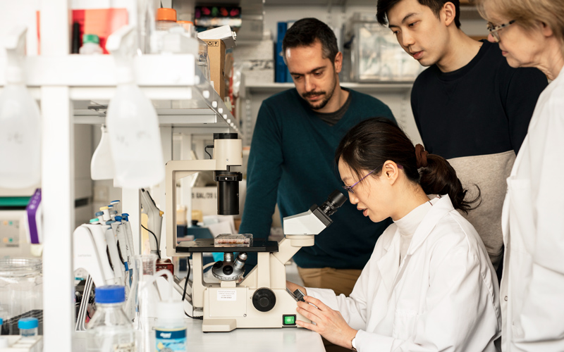 Three people working in a lab at the Institute of Ophthalmology