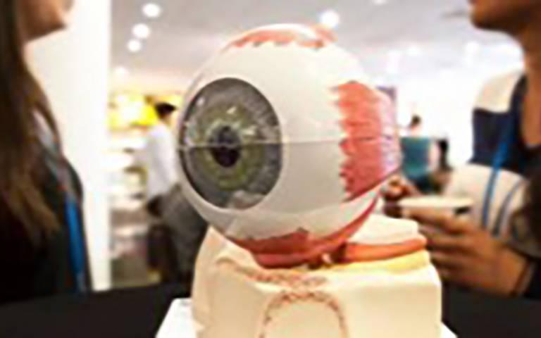 Image of large robot eye