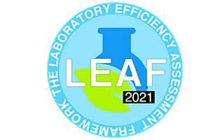 Logo of gold leaf