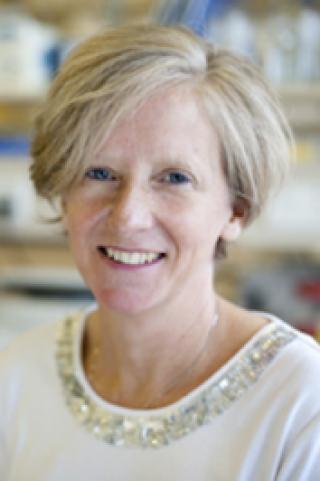 Prof Sarah Coupland