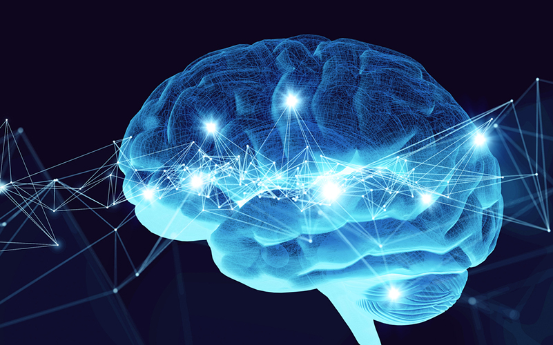 Visual neuroscience research theme