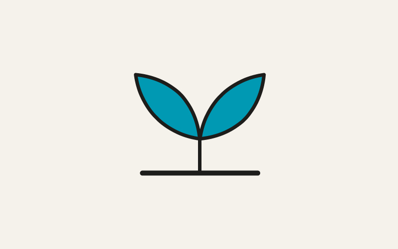 A stylised seedling to represent getting started with Lecturecast