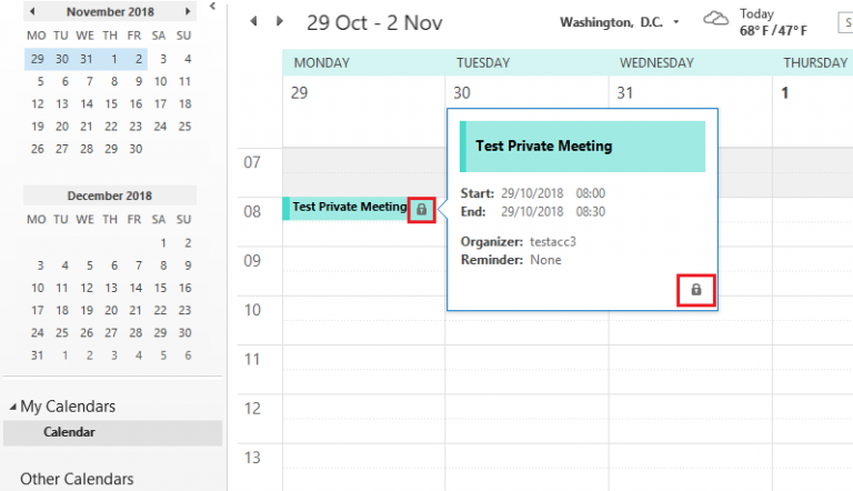 Fig 2. Private Meeting or Appointment created