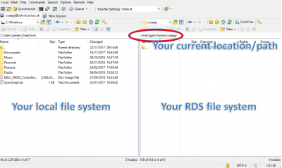 How to access the Research Data Storage Service using WinSCP