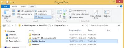 Delete SafeNet Sentinel folder…