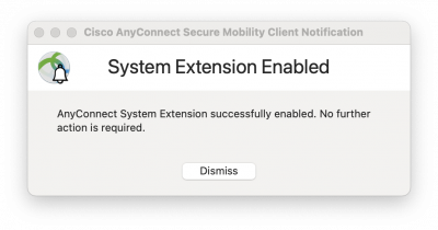 AnyConnect System Extension successfully enabled window