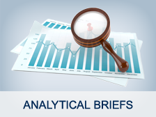 Analysis briefs