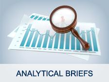 Analysis briefs