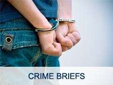 Crime briefs