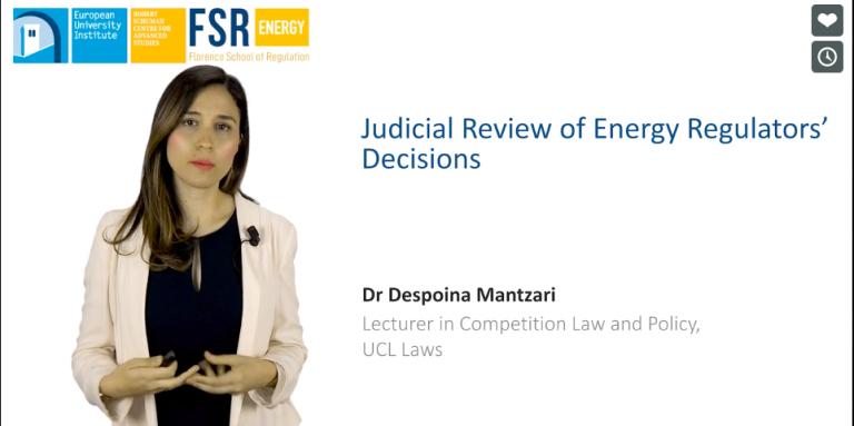 Dr Mantzari participates in online course