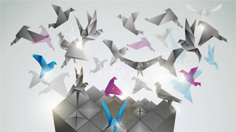 Birds launching to flight