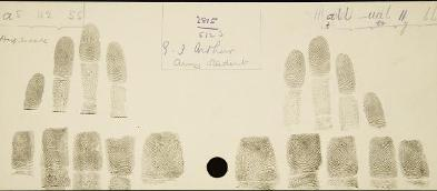 Galton's fingerprints