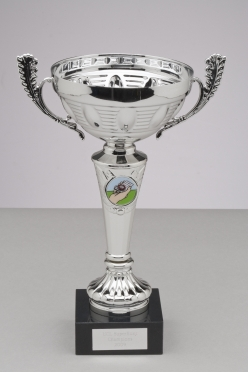 Cup: UCL Superhunt Champions 2009