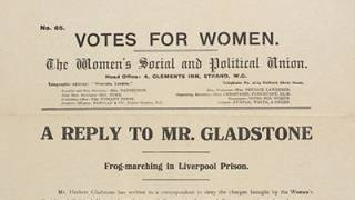 A reply to Mr Gladstone