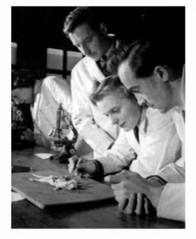 Vickers Scholarship…