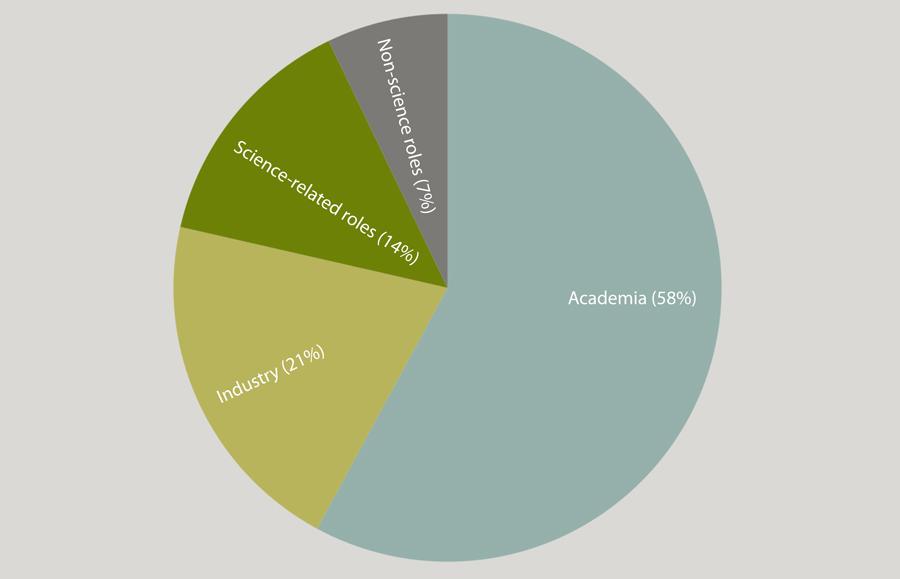 Graphic representation of alumni next destinations