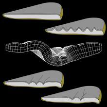 Cartoon tissue folding