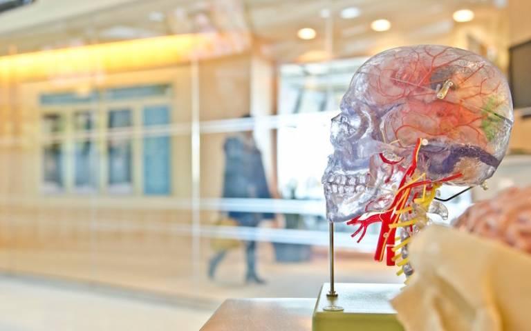 Silencing the Huntington's disease gene