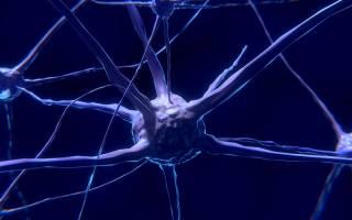Neuropixels