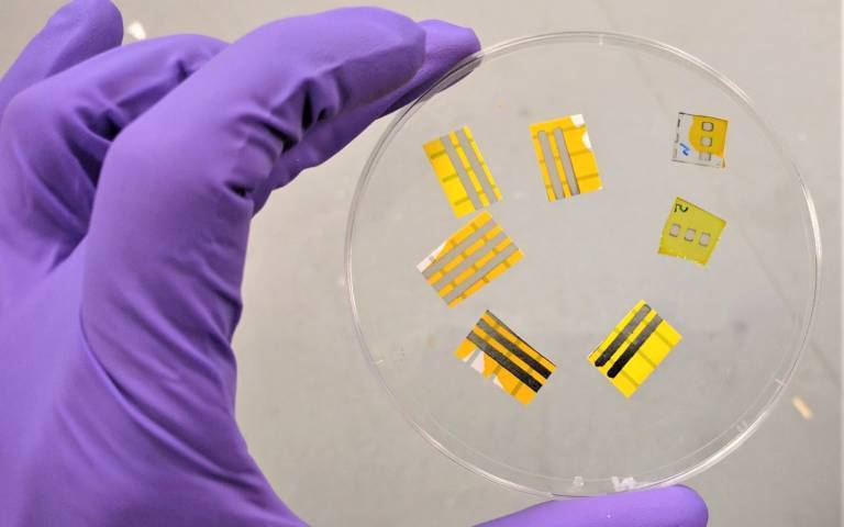 Image of OLEDs in a petri dish. Credit: Barsotti – Italian Institute of Technology