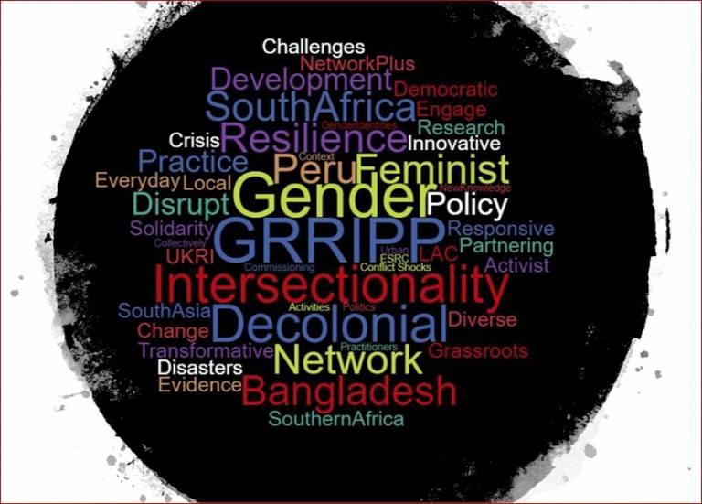 GRRIPP word cloud, taken from IRDR website