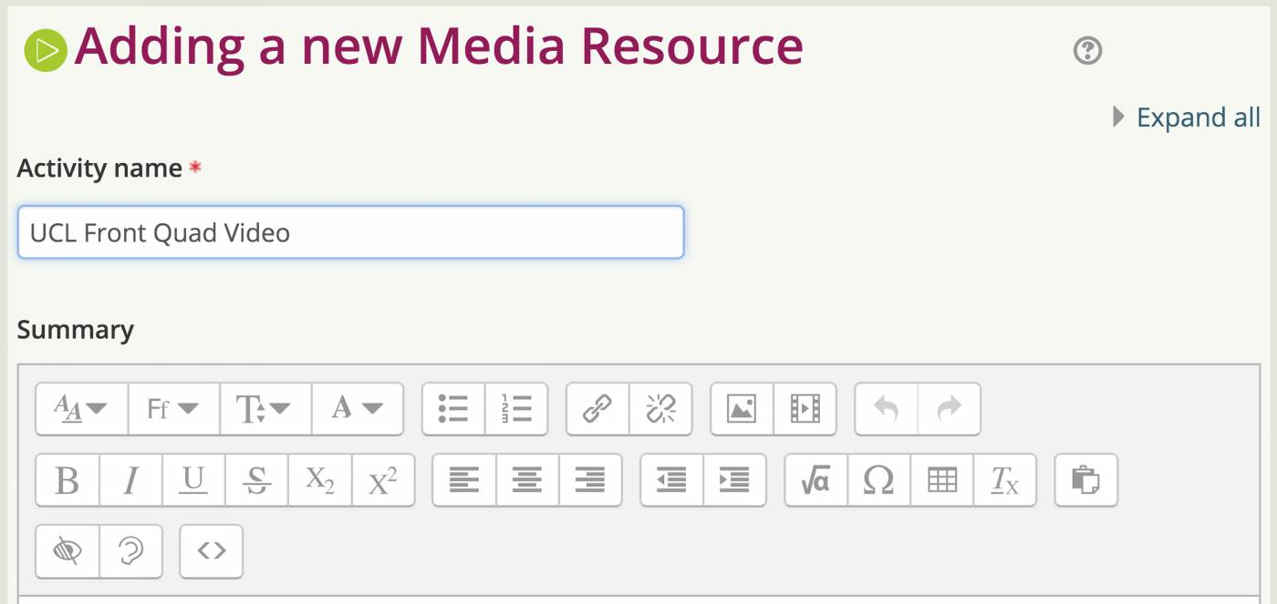 Add details to the activity in Moodle