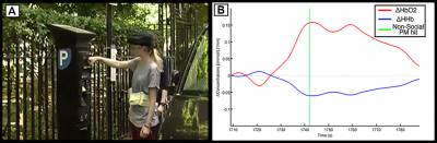 Representative participant carrying out the PM task in the streets of London (A) and example of HbO2 (red line) and HHb (blue line) changes in response to the PM task (B, adapted from [1]).