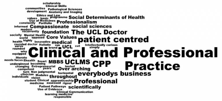 Clinical and Professional Practice | UCL Medical School - UCL