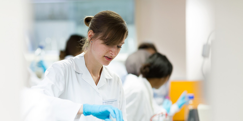 ucl medical science