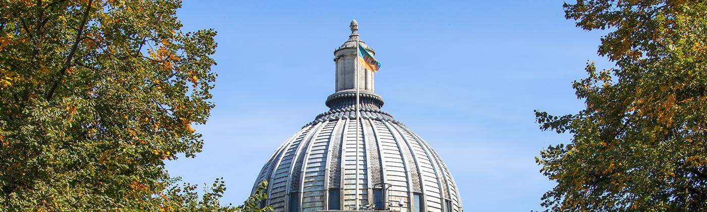 Portico dome UCL