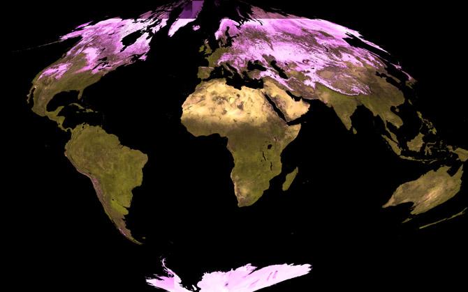 Global Albedo data