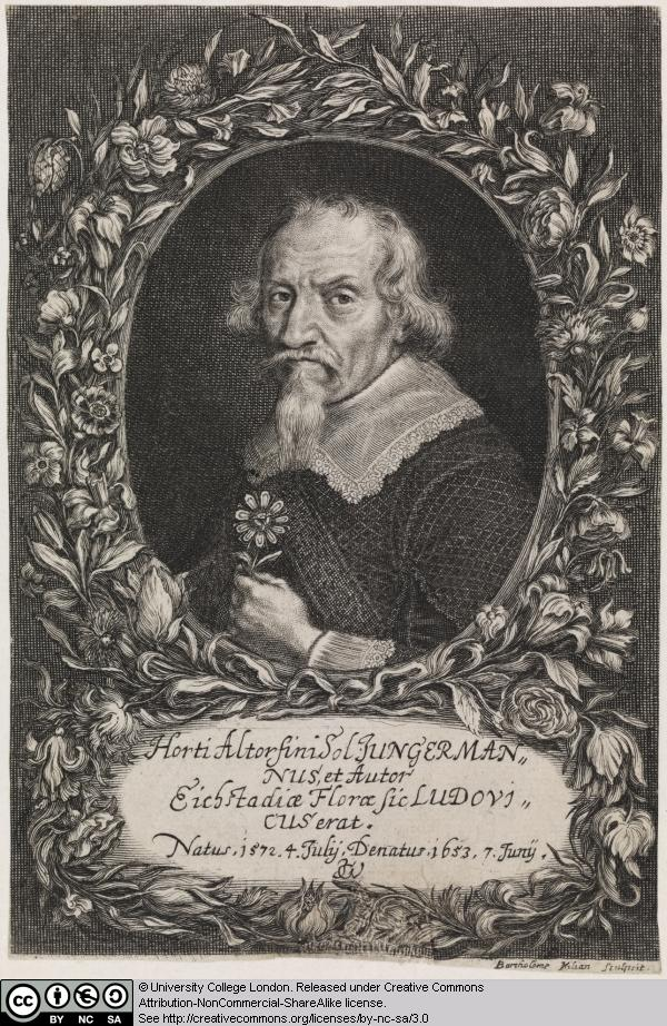 38 Ludwig Jungerman Doctor Of Botany