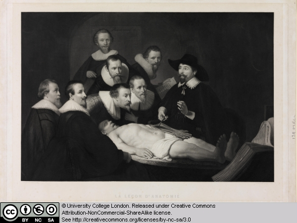 9 the anatomy lesson of dr nicolaes tulp