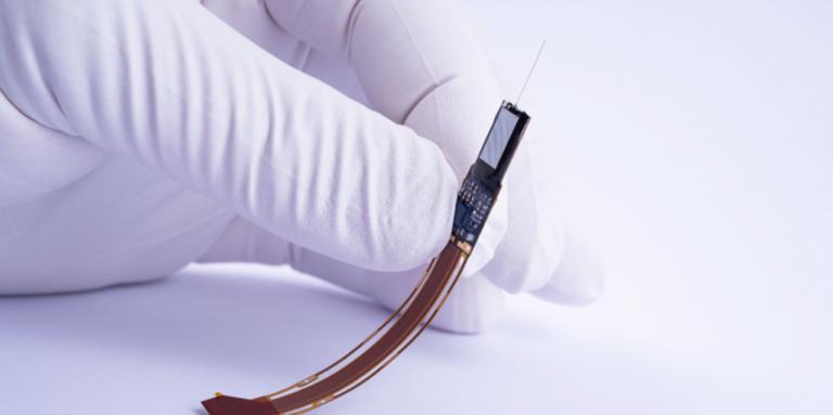 Hand holding Neuropixels probe