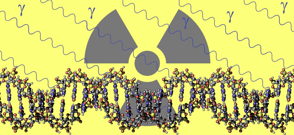DNA and radiation