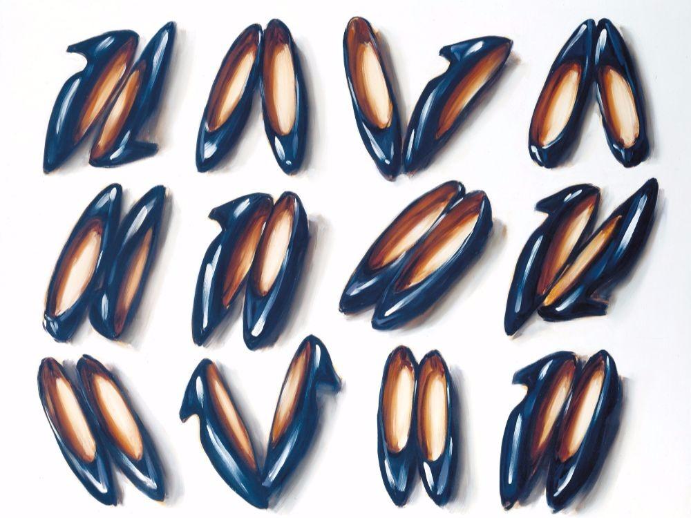 Lisa Milroy, Shoes