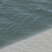 Detail from 'Black Sand' © 2010 Patricia Delgado