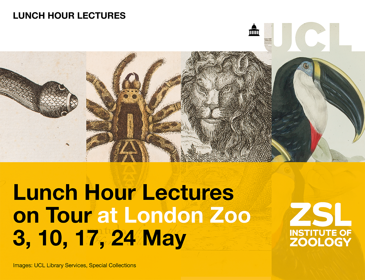 Lunch Hour Lectures on Tour May 2018