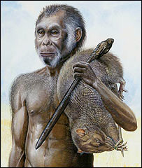 Artist's impression of a male Homo floresiensis (National Geographic)