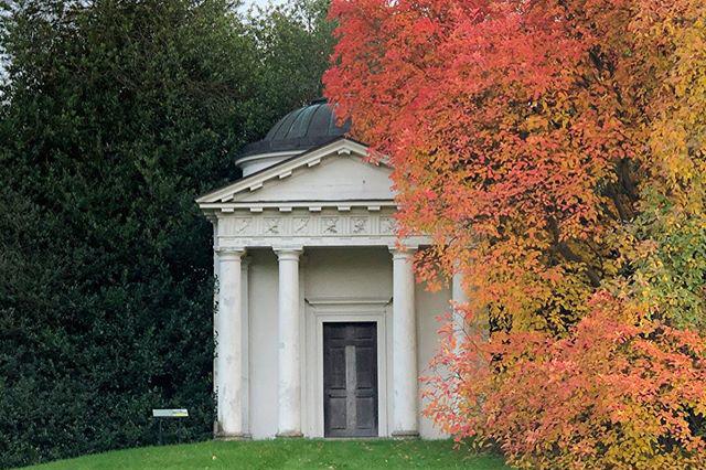 Kew Gardens by Michelle Shen @mishishen Nov 2019