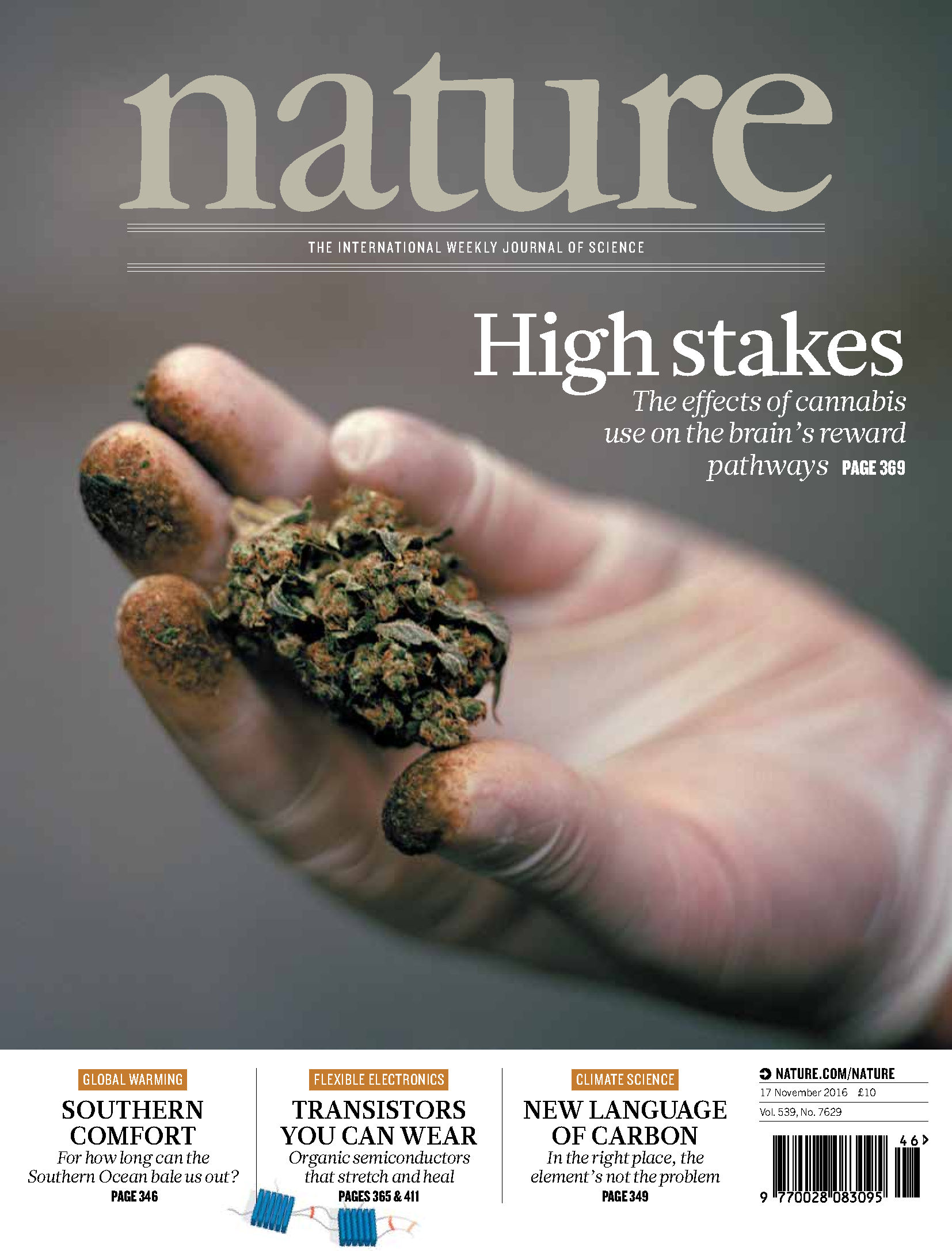 Cannabis review from Division of Psychiatry published in