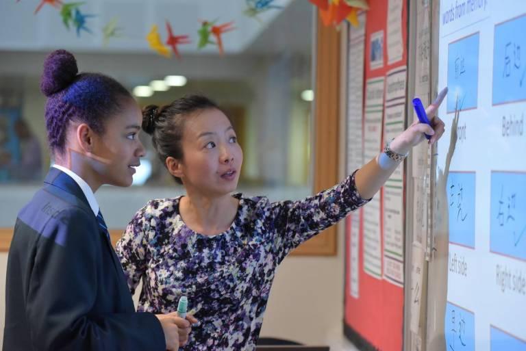 Mandarin Excellence Programme