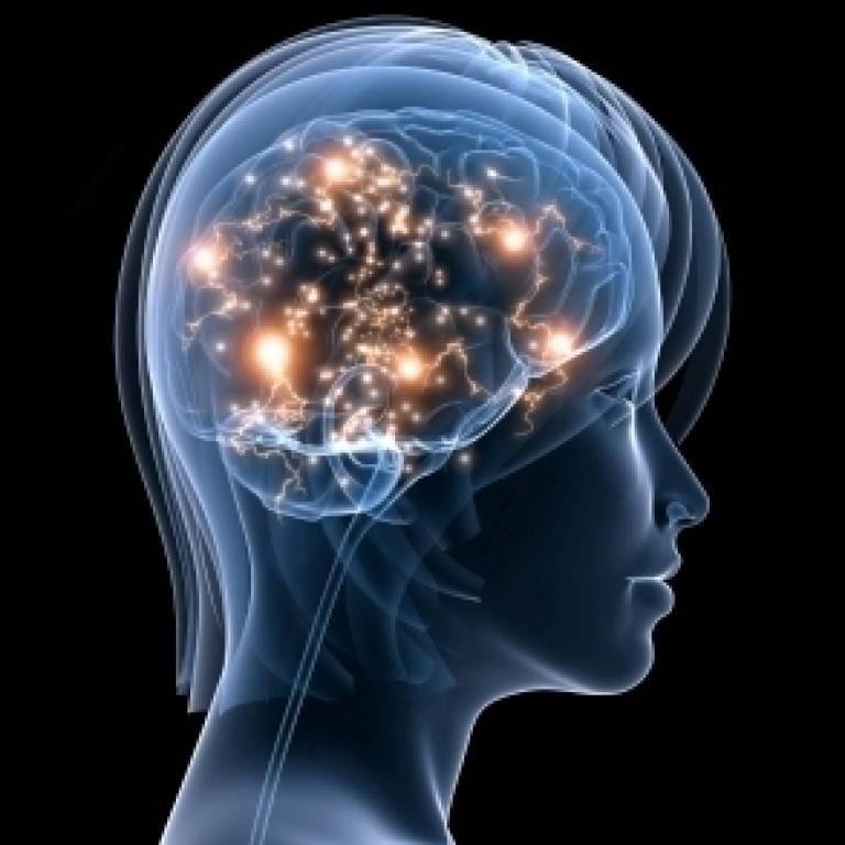 Image result for seizure & epilepsy images