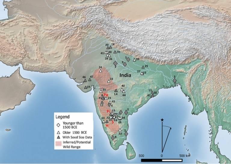 Map Horsegram