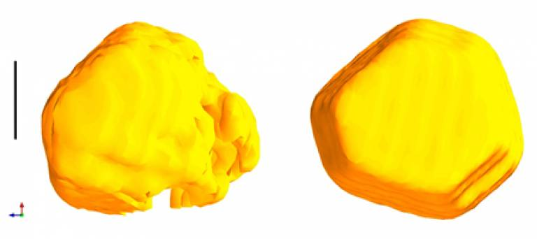 Gold nanocrystals