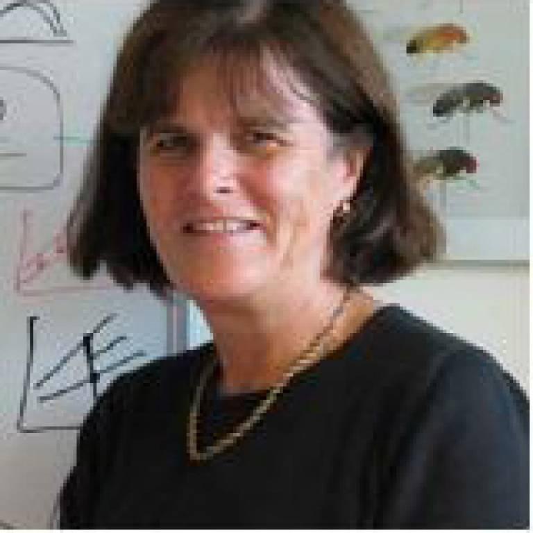 Professor Linda Partridge