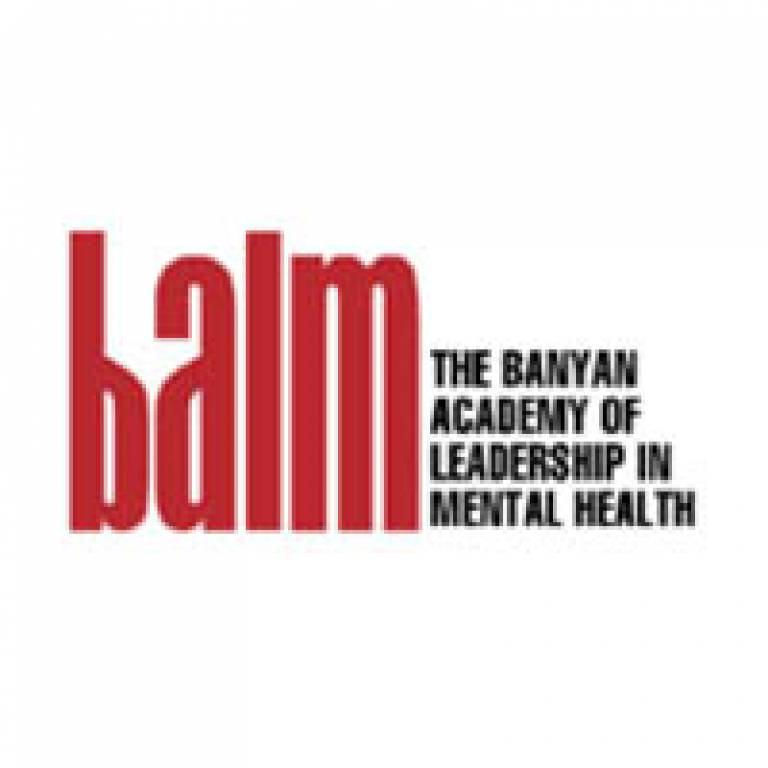 Banyan Academy