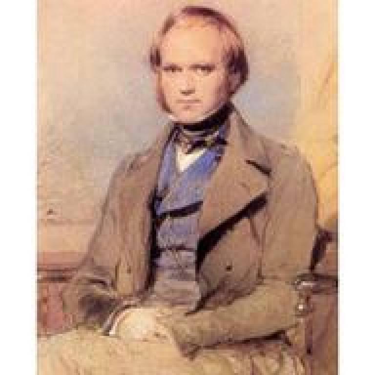Darwin's wedding portrait